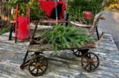 a small antique wagon with Christmas decorations inside
