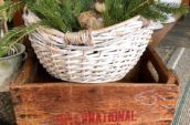 antique wood box with a basket on top filled with spruce boughs