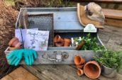 antique wooden gardening case with gardening supplies inside