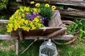 antique wooden wheelbarrow with yellow and purple flowers inside