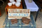blue wooden box with wooden chicken feeder tray on top