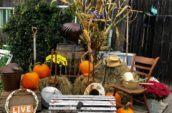 various items and signs among bales of hay and pumpkins